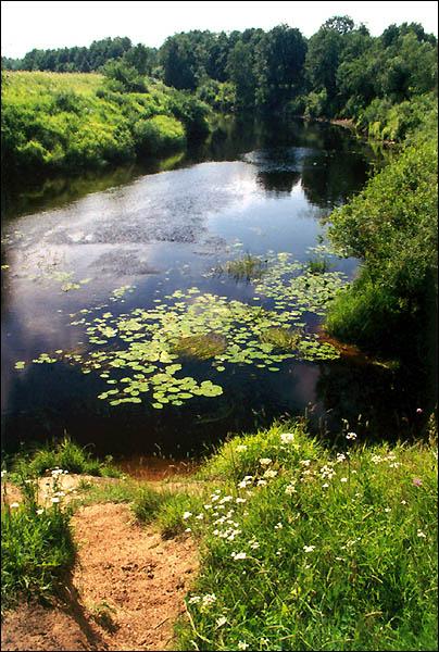 Река пчёвжа фотографии разных лет